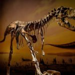 Best dinosaur museums and attractions worldwide